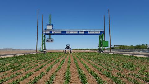 Phenotyping field scanner system