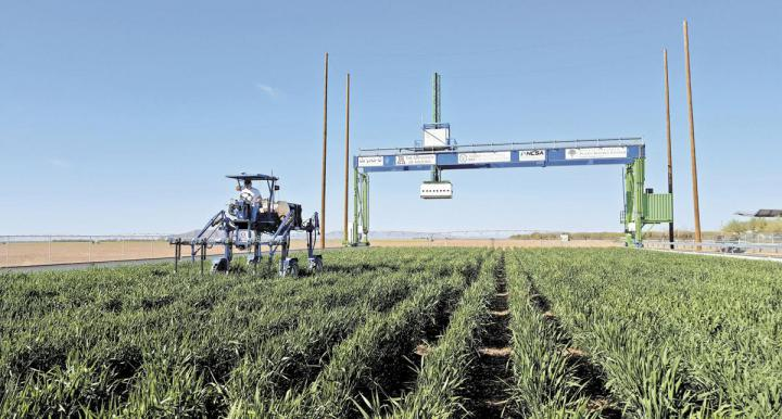 Rising from the flat desert south of Phoenix is a 50-foot-tall robot that feeds crop data back to the Midwest.