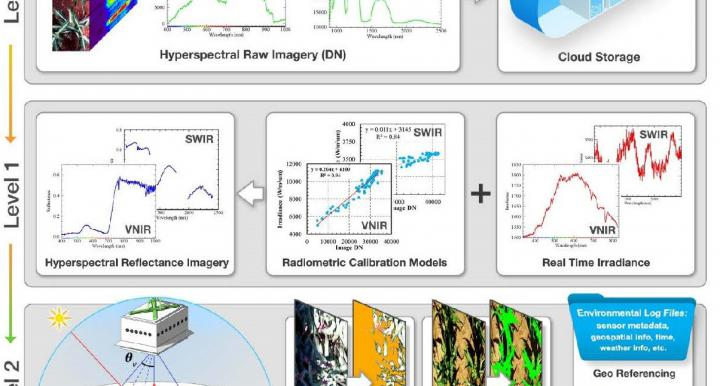 Overall workflow of hyperspectral imagery processing pipeline.